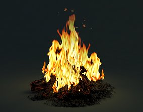 flaming 3dsmax 3D Camp Fire