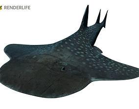 3D model Angel Shark with animation