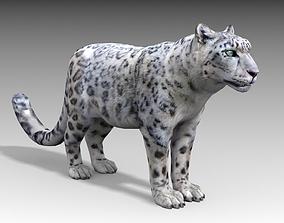 Snow Leopard 3D model animated