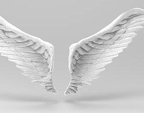 Angel wings rough open wide 3D