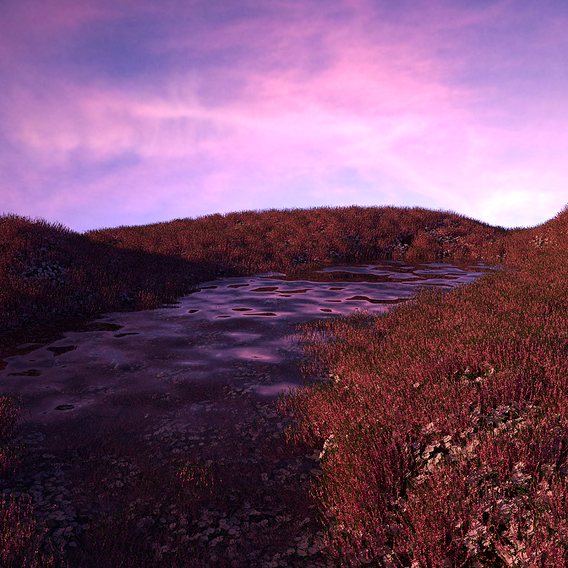 Abstract  Landscape Scene
