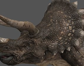 Triceratops - animations 3D model