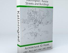 Kaliningrad Streets and Buildings 3D model