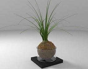 Ball Plant 3D model