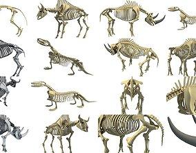 Wild Skeleton Pack 3D model