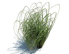 Green Long Grass 3D model