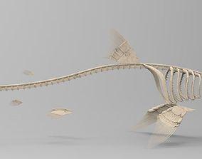 Great White Shark Skeleton 3D Model rigged