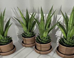 Indoor Pot Plant 3 Low-Poly 3D model