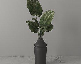 trend flower001 pantone 3D