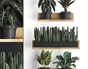 Plant set wall decor vertical garden 399 3D