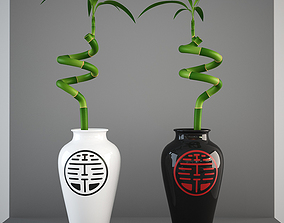Lucky Bamboo 3D