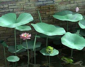Pond Plants and Frog 3D model