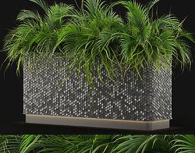 3D Plants collection 463