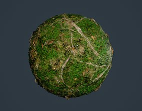 3D model Forest Ground Seamless PBR Texture 14