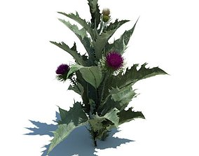 3D Green Weed With Purple Flowers