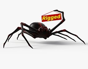 Rigged Spider with 8K PBR Textures 3D asset