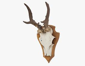 Deer Antlers hunter 3D model
