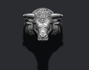 Bull ring 3D printable model