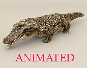 3D model Realistic Animated Crocodile-Rigged