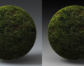 Grass Landscape Shader 012 3D model