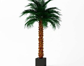 Artificial Palm Tree 3D