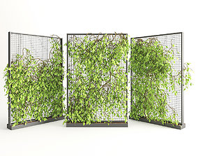 3D Planter With Plants-Ivy 2