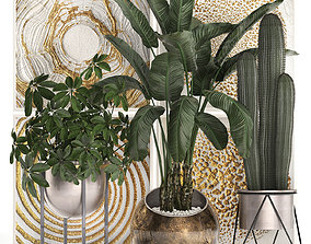 Decorative plants in flower pots for the interior 467 3D