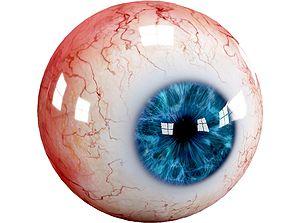 3D model Human eyes