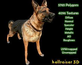 Dog K-9 - Textured 3D model