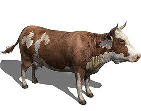 3D model cow hi-res