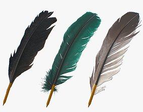 3D asset Feathers Pens pack