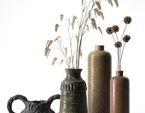 3D model Vases with Plants 3