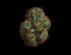 Weed Bud 3D model