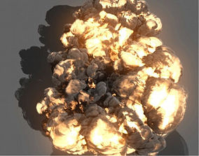 3D model Maya Fluids Effects Assets Bundle