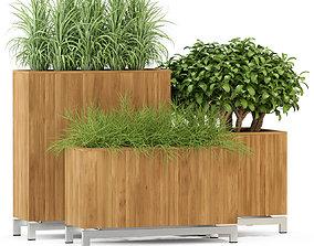 Plants collection 284 Fleurami KAYU 3D