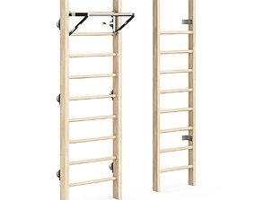 3D Swedish ladder
