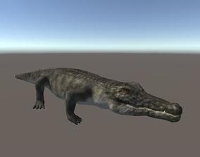 Unity Crocodile 3D asset