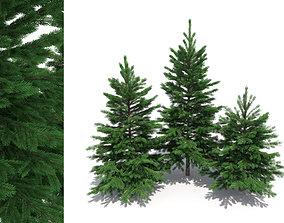 Fir-tree set 3D