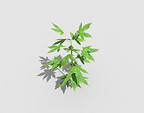 Low poly Plant plant 3D model game-ready