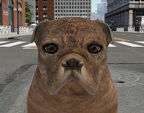 FBEX-006 Dog 3D asset
