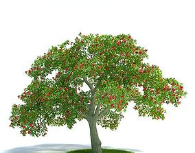 3D Tree With Red Flower Branches