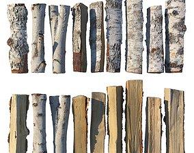 3D model Birch firewood