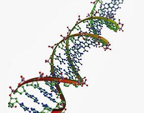 DNA chains 3D