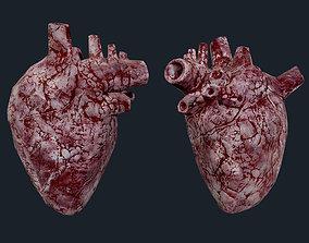 3D model Heart Human Organ Game Ready 07