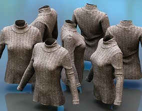 Brown Turtle Neck Pull Top 3D asset