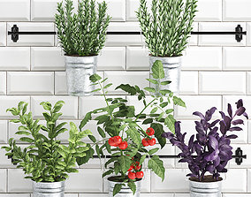 3D model Decorative plants for the kitchen on railing 380