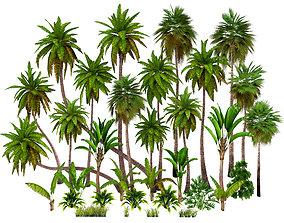 Palms low poly 3D asset