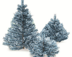 Blue spruce 3D model