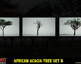 3D model AFRICAN ACACIA TREE PACK B - 3 TREES