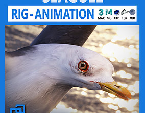 3D model realtime Animated Seagull